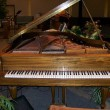 Old Grand Piano - Kemble